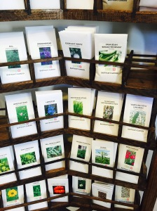 Seeds and plants for sale cultivated in the garden.